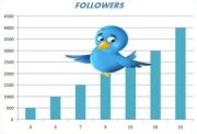 11 Sureshot Tips And Tricks To Increase Your Twitter Followers