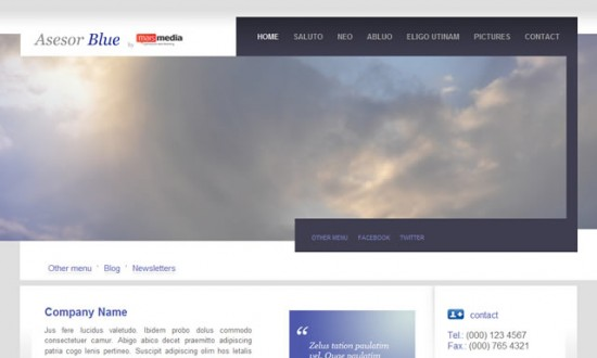 best free drupal theme01 e1300081988224 40 High Quality Drupal Themes For Free Download