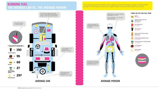 Burning Fuel: The Average Car vs. The Average Human