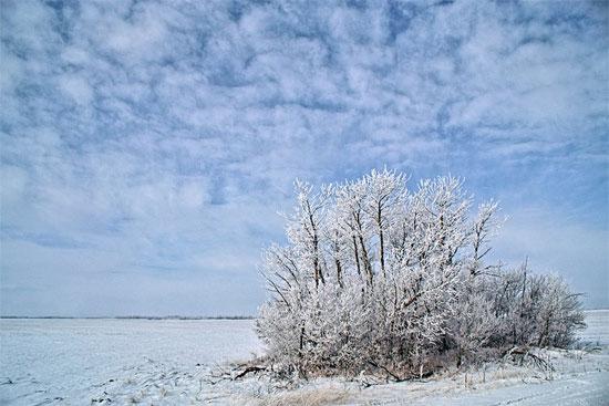 Beautiful Photographs of Winter (135)