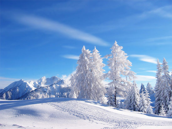 Beautiful Photographs of Winter (126)