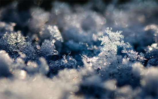 Beautiful Photographs of Winter (125)