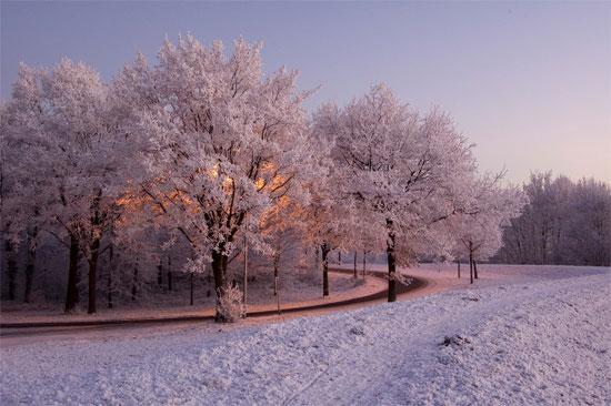 Beautiful Photographs of Winter (144)