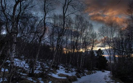 Beautiful Photographs of Winter (121)