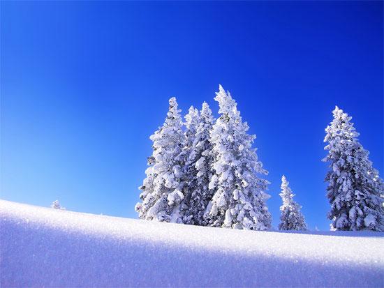 Beautiful Photographs of Winter (138)