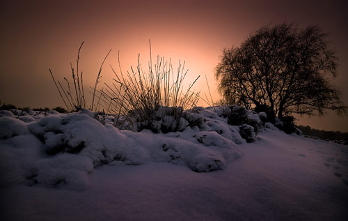 Beautiful Photographs of Winter (75)