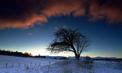Beautiful Photographs of Winter (73)