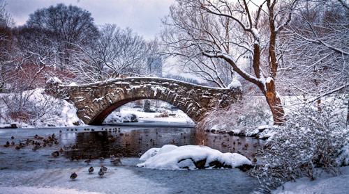 Beautiful Photographs of Winter (65)
