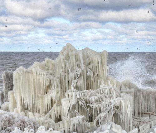 Beautiful Photographs of Winter (64)