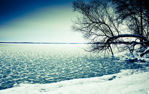 Beautiful Photographs of Winter (61)