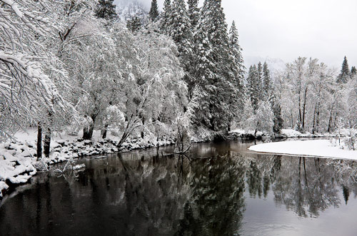 Beautiful Photographs of Winter (60)