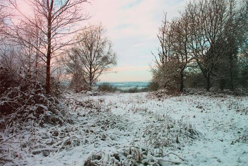 Beautiful Photographs of Winter (86)