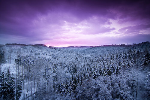 Beautiful Photographs of Winter (59)
