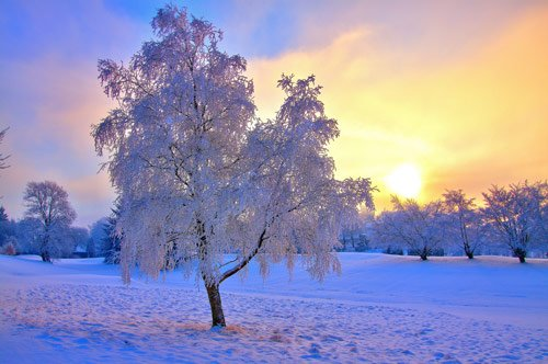 Beautiful Photographs of Winter (58)