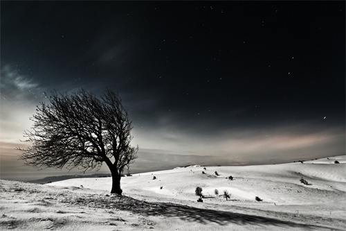 Beautiful Photographs of Winter (84)