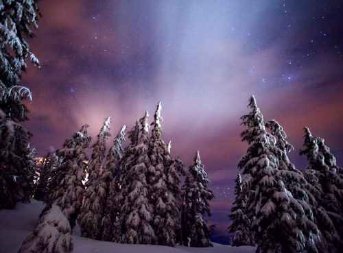 Beautiful Photographs of Winter (57)