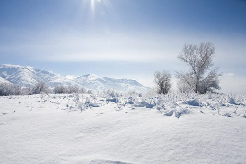 Beautiful Photographs of Winter (51)