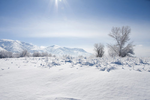 Beautiful Photographs of Winter (51)