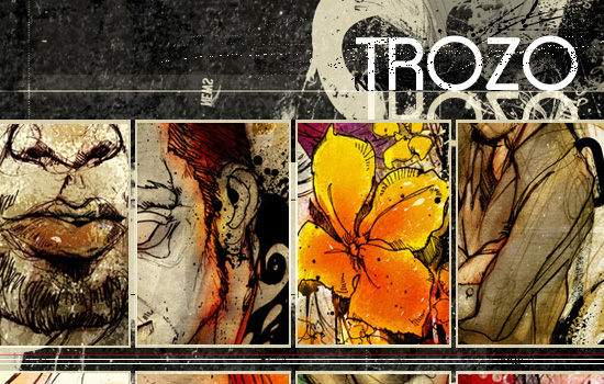 TROZO GALLERY screen shot.