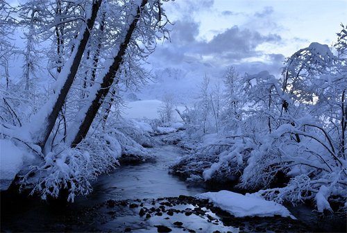 Beautiful Photographs of Winter (108)