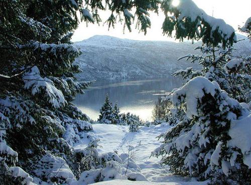 Beautiful Photographs of Winter (107)