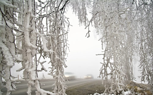 Beautiful Photographs of Winter (80)