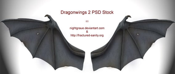 Dragon Wings PSD-Stock