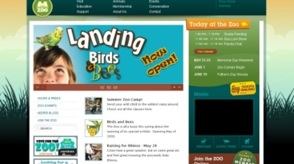 Best Websites Of Non Profit Organisations On The Web