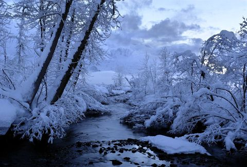 Beautiful Photographs of Winter (17)