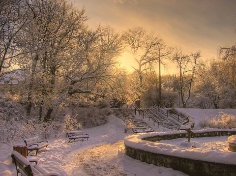 Beautiful Photographs of Winter (8)