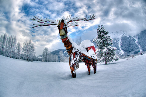 Beautiful Photographs of Winter (12)