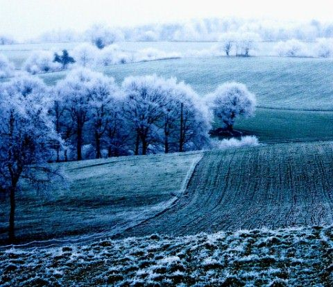 Beautiful Photographs of Winter (44)