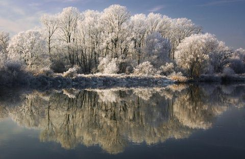 Beautiful Photographs of Winter (21)