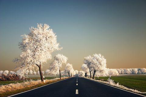 Beautiful Photographs of Winter (49)