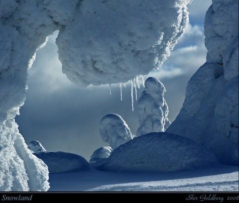 Beautiful Photographs of Winter (24)