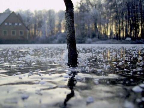 Beautiful Photographs of Winter (45)