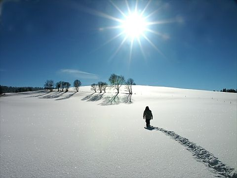 Beautiful Photographs of Winter (29)