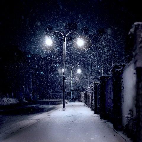 Beautiful Photographs of Winter (34)
