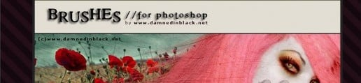 Sites To Download Free High Quality Adobe Photoshop Brushes