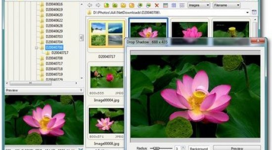 Top 5 tips for FastStone Image Viewer - A Free Image Browser, Converter and Editor