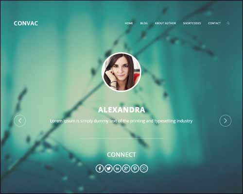 Convac Lite Free WordPress Theme