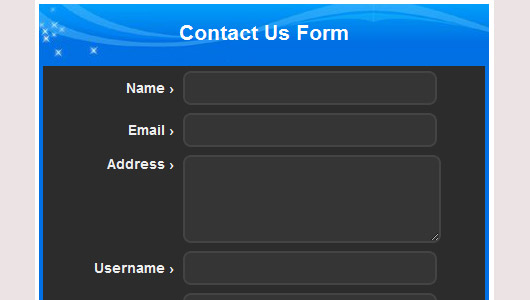 CSS Form