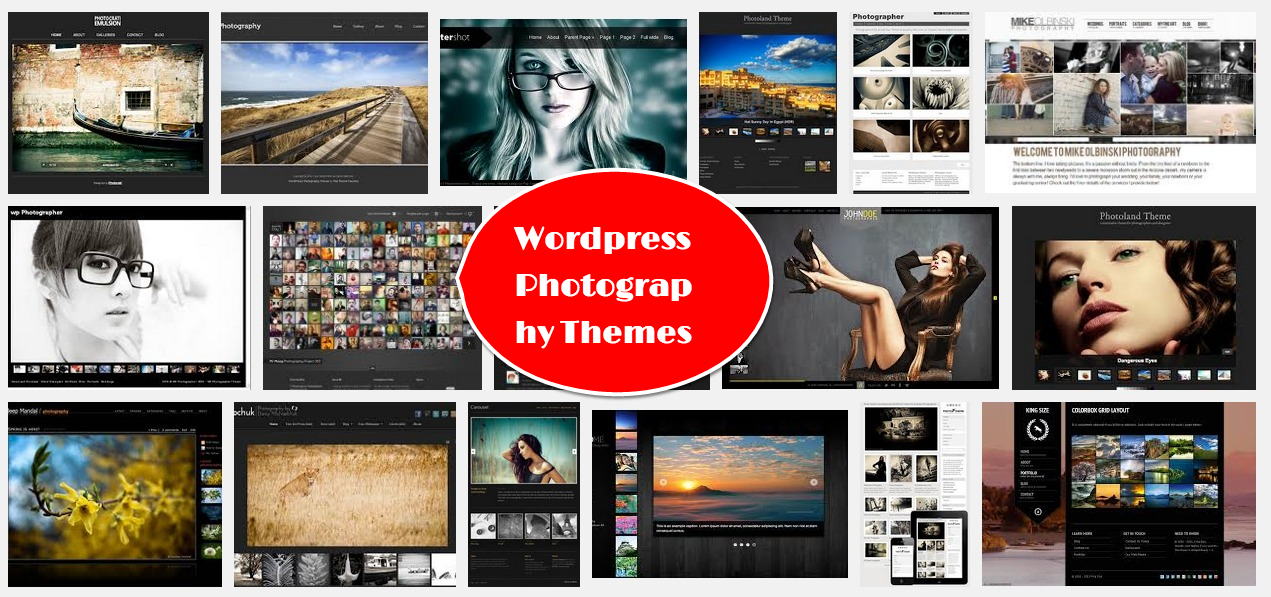20+ Top WordPress Photography Themes