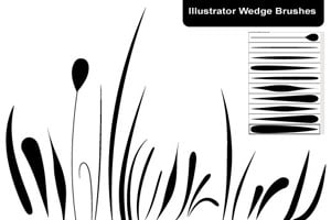 Illustrator Wedge Brushes