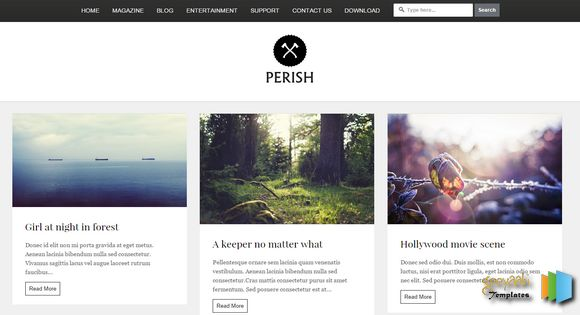 Perish-Photography-Blogger-Template
