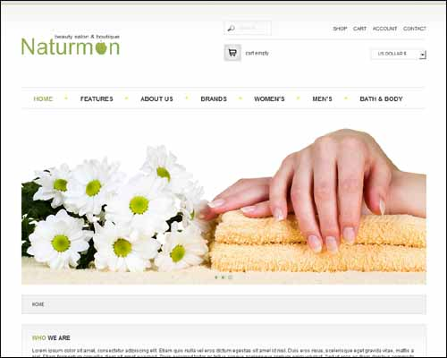 AS 002051 Free Joomla VirtueMart Template