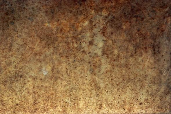 Bones Texture Stock