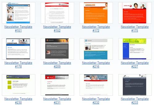 website newsletter template