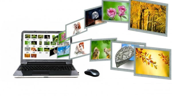 Top 7 Best Reverse Image Search Engines Right Now