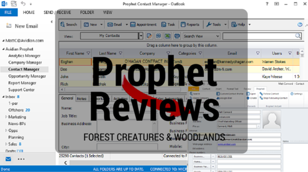 Prophet CRM Review 2016